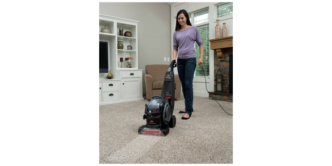 pet carpet cleaner